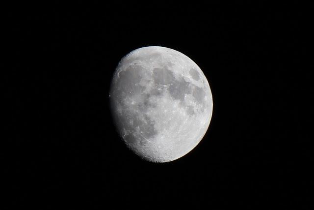 luna-Bis