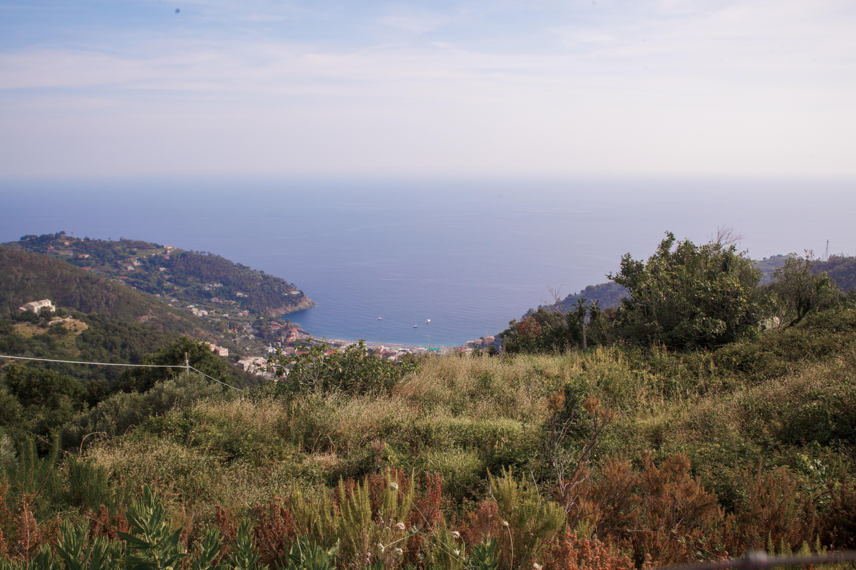 Cà du Ferrà, visita ai vigneti vista mare e degustazione